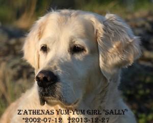 Sally19-05-13